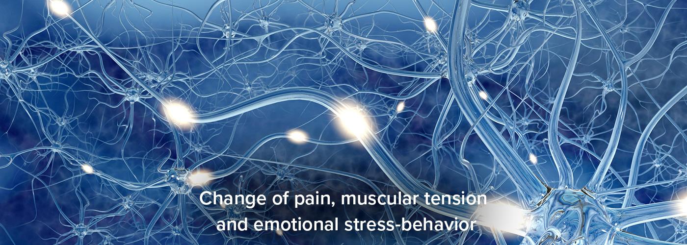 echobell-pain-stess-slider01-en